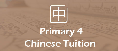 Chinese Tuition for primary 4