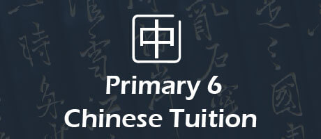 Chinese Tuition for primary 6